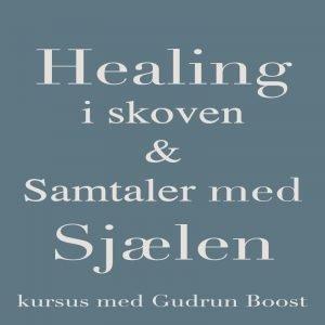 Healingiskoven_gudrunboost.dk